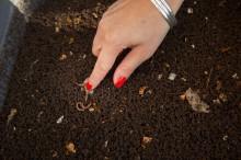 Fête des déchets alimentaires 2018 - crédits : Est Ensemble / Gaël Kerbaol