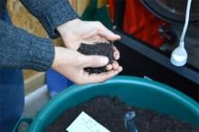 Ecole du compostage - Crédit : Les alchimistes