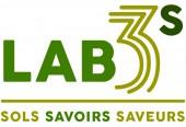 Logo LAB3S
