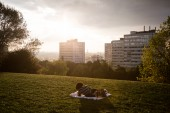Le parc des Beaumonts à Montreuil. @Camille Millerand.